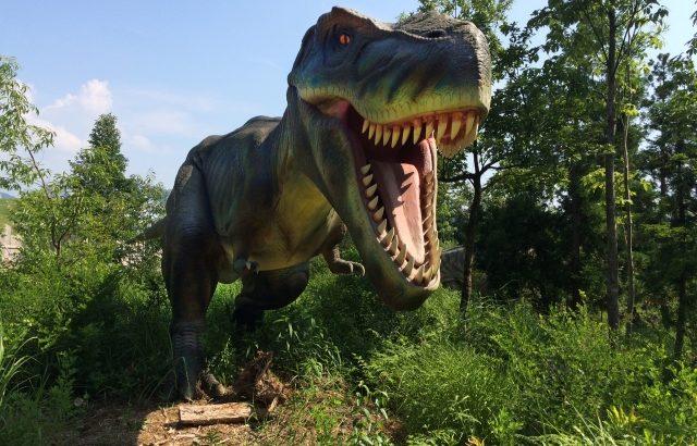 ボイ美ダイナソー!ティラノサウルスのすごい所3つ